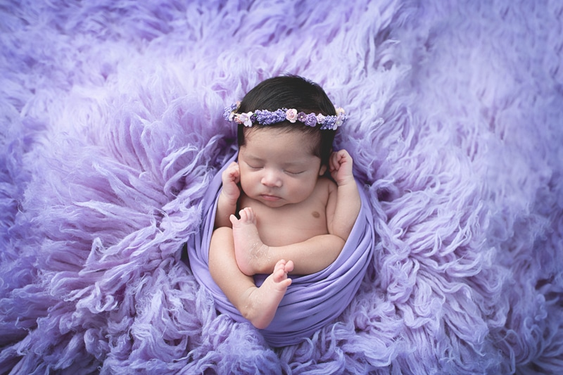 Newborn Photography, baby wrapped in bright purple blanket